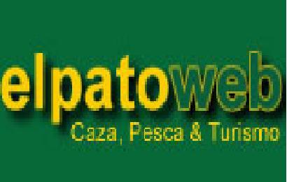 patoweb